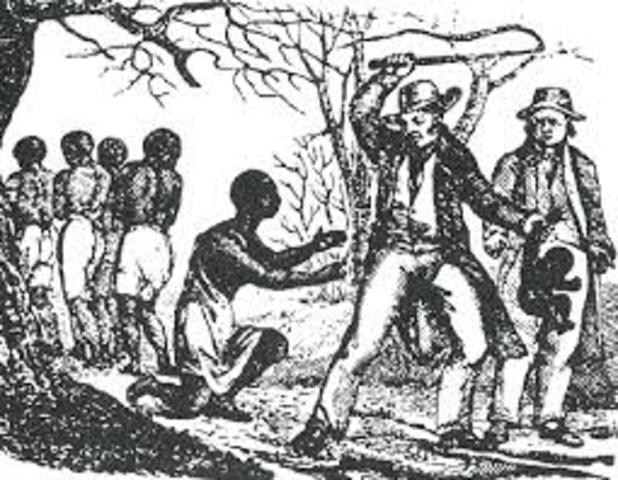 Slaverne kommer til Amerika