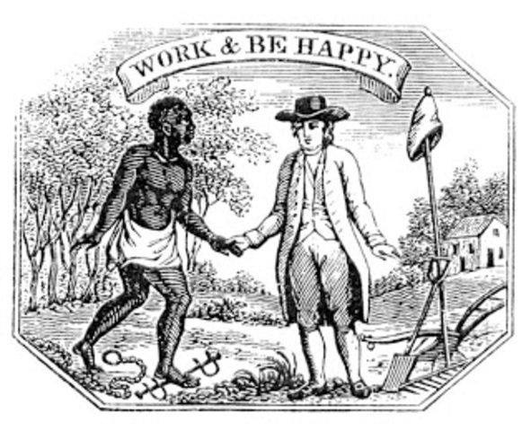 New Netherlands imported slaves