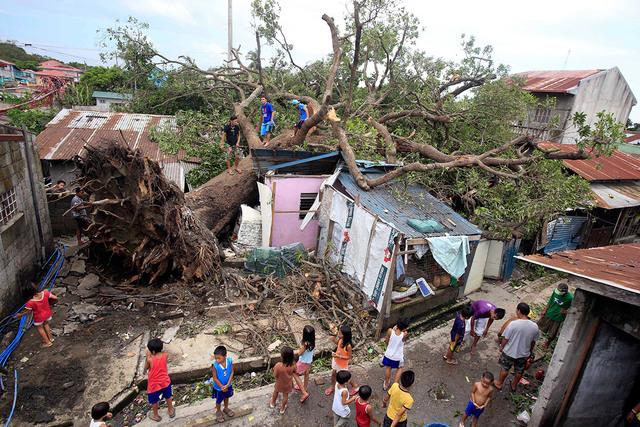 Typhoon Rammasun (Glenda)