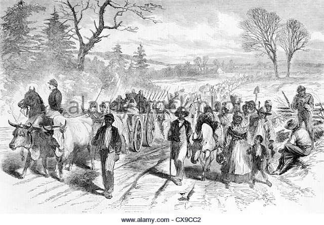 Importation of slaves was banned in Virginia