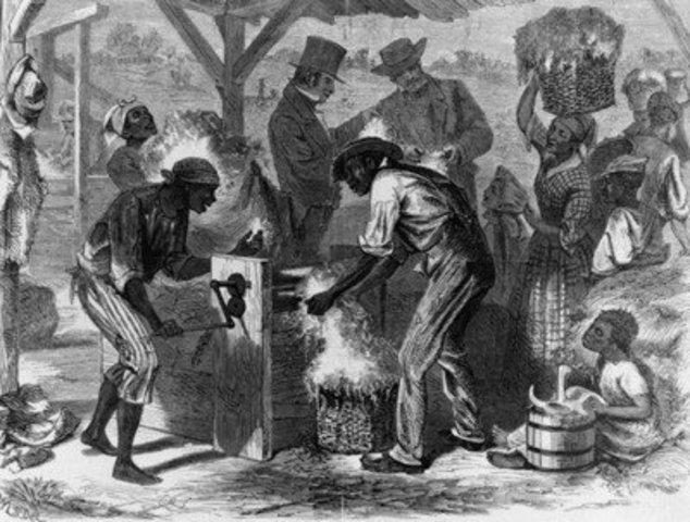 Georgia prohibited slavery