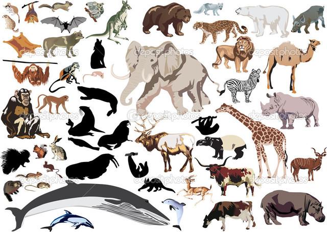 Mammals emerge (150 mya)
