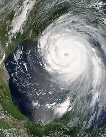 A hurricane devastated the Louisiana, Mississippi, and Alabama coastlines