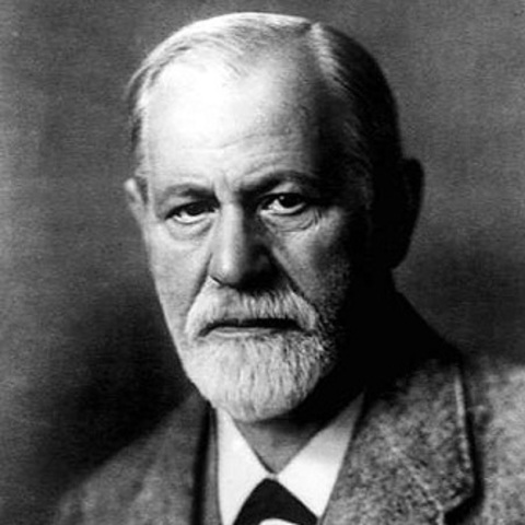 Sigmund Freud studies human behavior