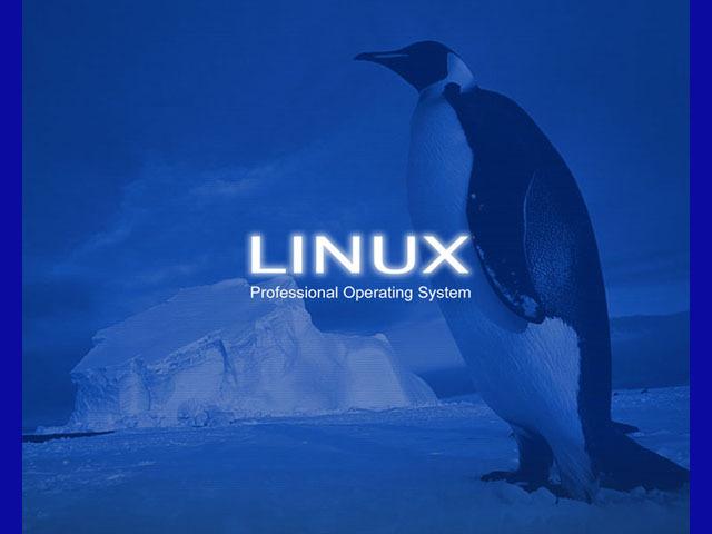 Linus Torvalds lasi välja 1.0 Linux tuuma