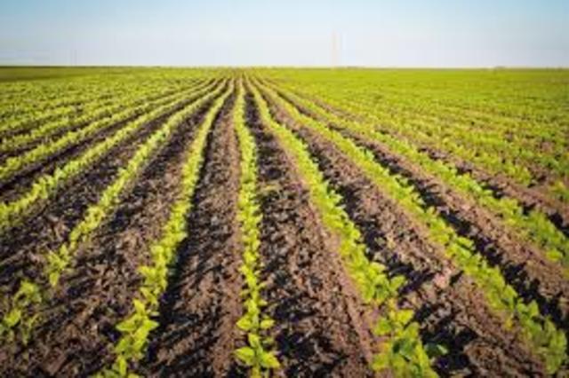 Ley del Seguro Agrícola y Ganadero