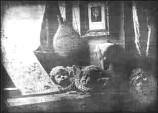 Daguerrotype Created