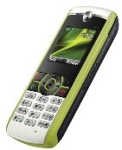 Motorola Renew