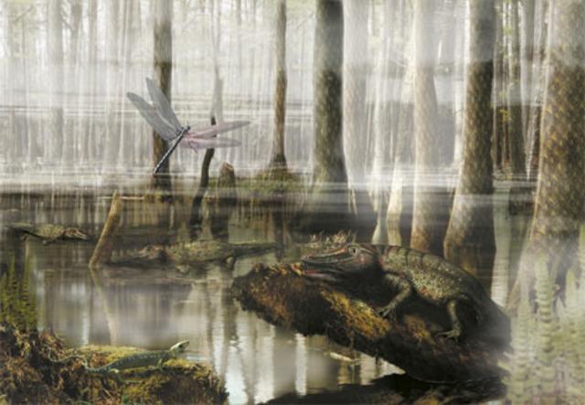 Carboniferous 345-280 M