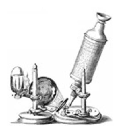 Robert Hooke's Micrographia