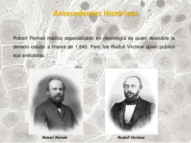 Robert Remarck y Rudolph Virchow