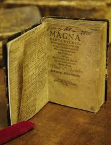 Elaboracion de la carta magna