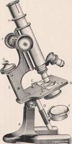 Primer Microscopi Electronic