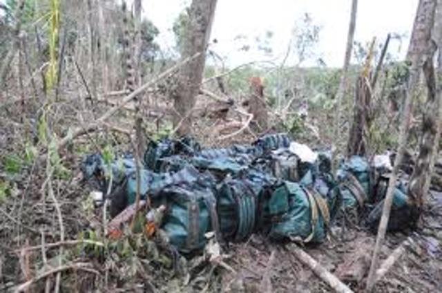 A Bogotá fueron trasladados cuerpos de los 22 guerrilleros muertos en operaciones en Putumayo