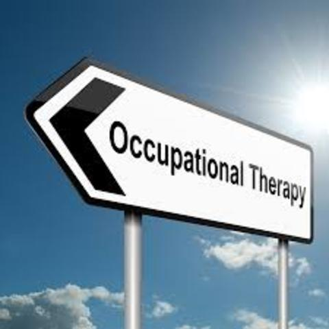 """AOTA published an article titled """"Core Values and  Attitudes of Occupational Therapy Practice"""""""