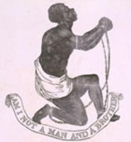 Slave Codes