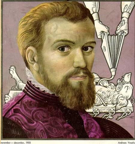 On the Fabric of the Human Body (Vesalius, 1543)