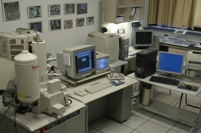 Técnicas de microanálisis