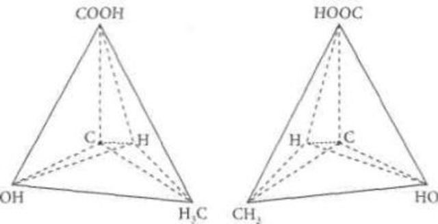 átomos de carbono fijos a anillos planos
