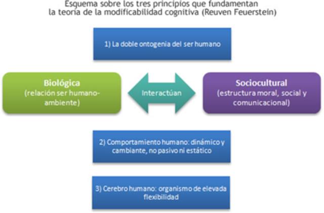 Modificabilidad cognitiva estructural