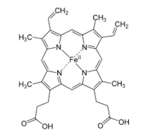 estructura del hemo