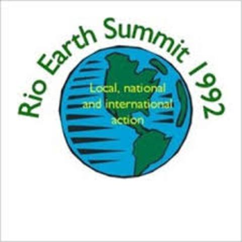 La política ambiental global