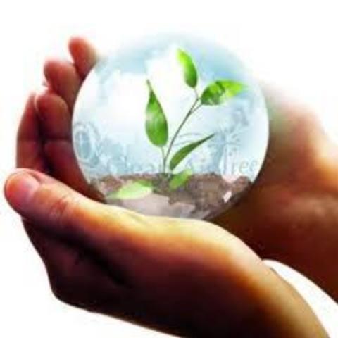 El mejoramiento de la calidad ambiental de vida