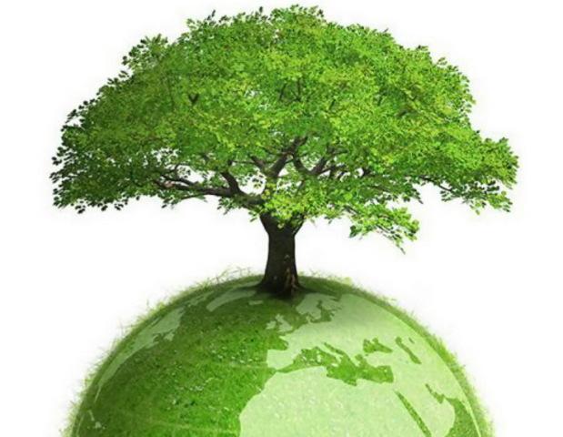 День экологических знаний ООН