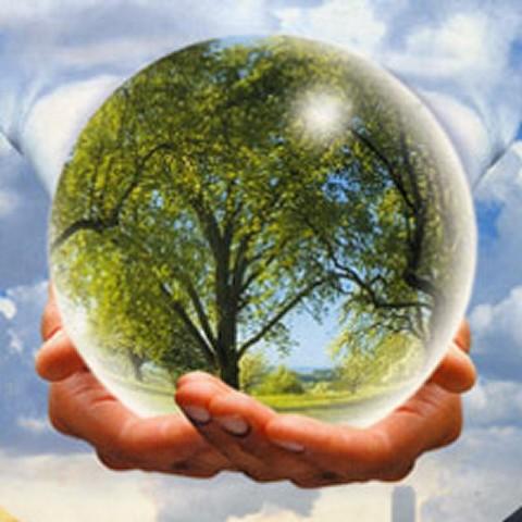 "Международный день леса (Команда ""Симбиоз"" МБОУ СШ №15 г. Арзамас)"