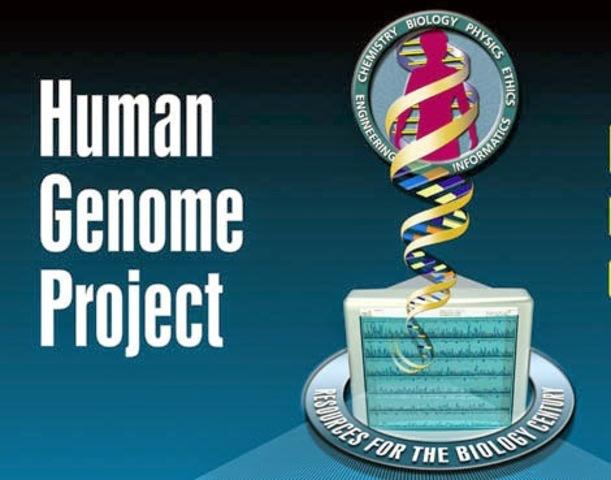 Создание программы «Геном человека»