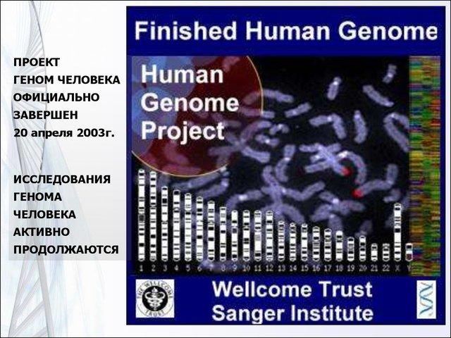 """Успешное завершение """"Генома человека"""""""