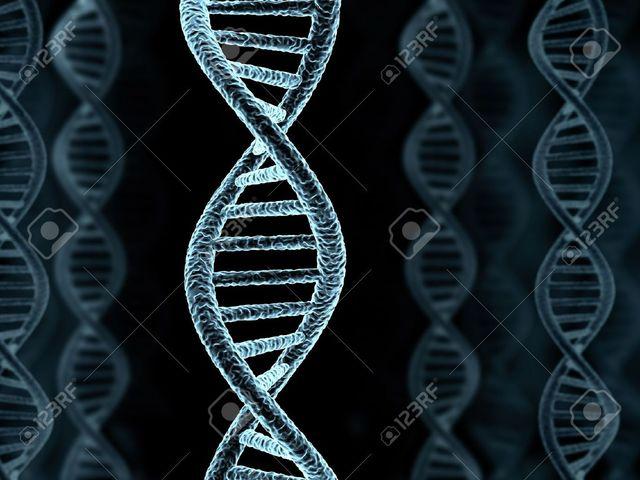 Открытие структуры новой спирали ДНК.