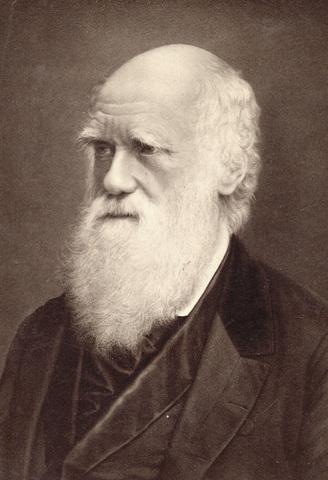 Чарлз Дарвин (1809–1882)