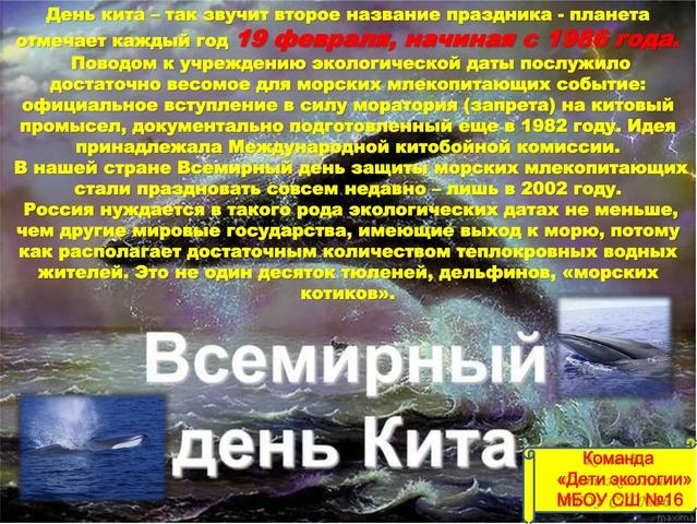 """Всемирный день кита (команда """"Дети экологии"""" МБОУ СШ №16 г. Арзамас)"""