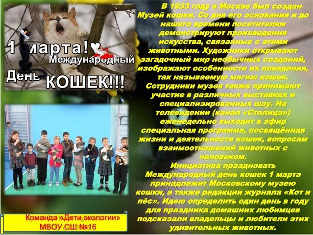"""Международный день кошек (Команда """"Дети экологии"""" МБОУ СШ №16 г. Арзамас)"""