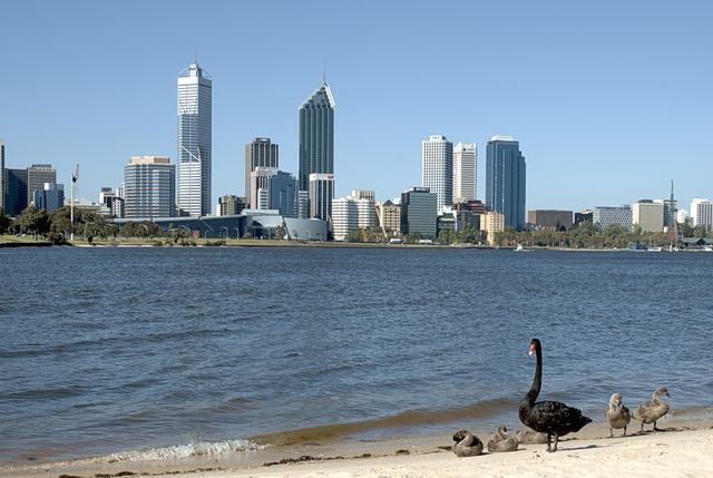 Perth: 2001-2002