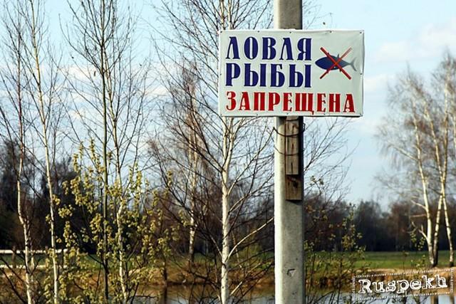 """День действий против рыбной ловли в России (команда """"Экологический десант"""")"""