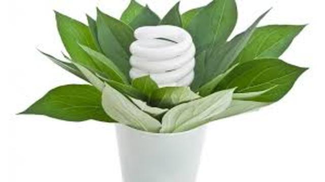 """Международный день энергосбережения. (команда """"Экологический десант"""")"""