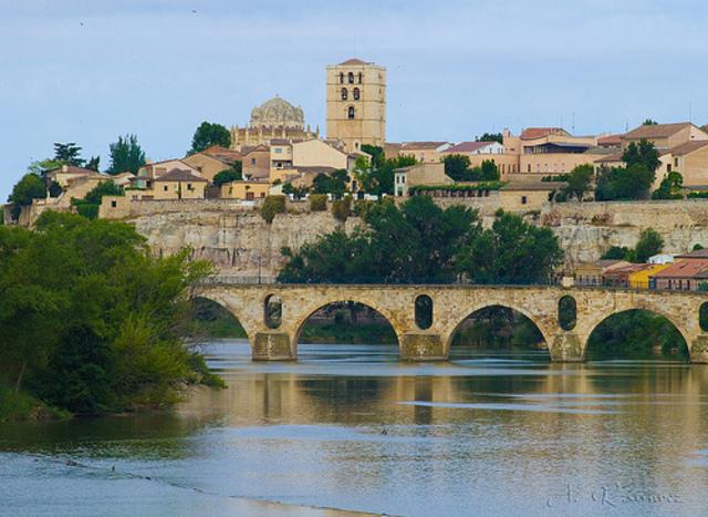 Los cristianos conquistan Zamora