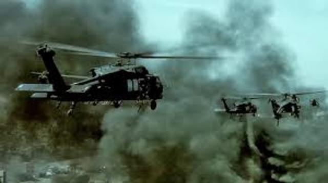 American Black Hawk