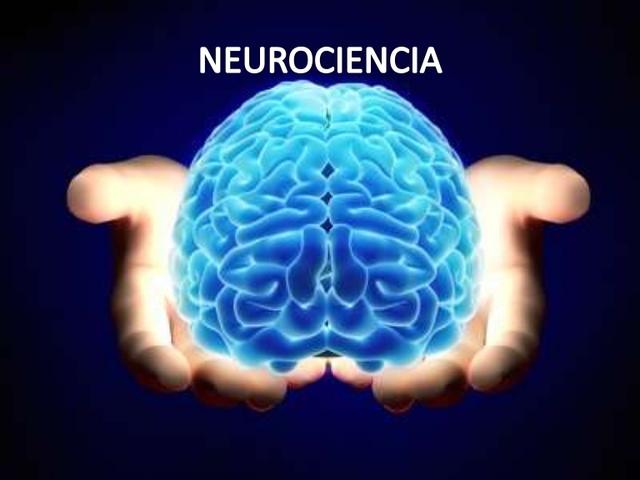 Nace la Neurociencia
