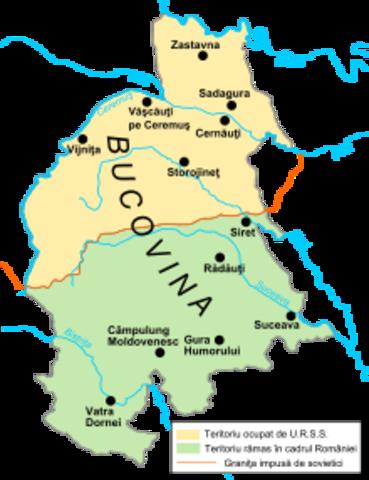 Ofensiva rusa en Bucovina