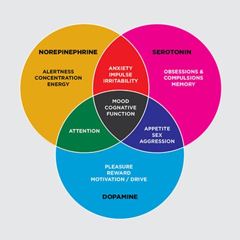 Modern Psychopharmacology