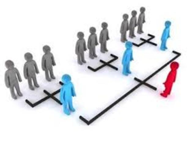 Teoría neoclásica ( tipos de organización)