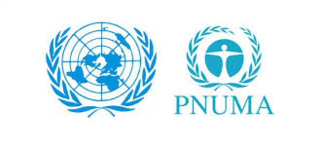 Programa de las Naciones Unidas para el Medio Ambiente (PUNMA)