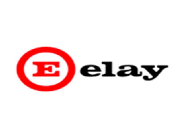 Lehenengo Euskara Plana: Elay SA enpresa