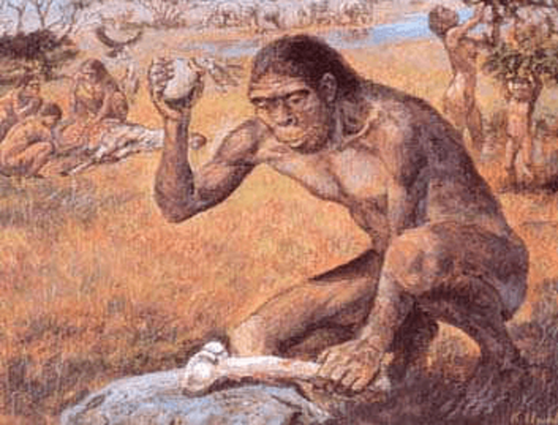 Período paleolitico