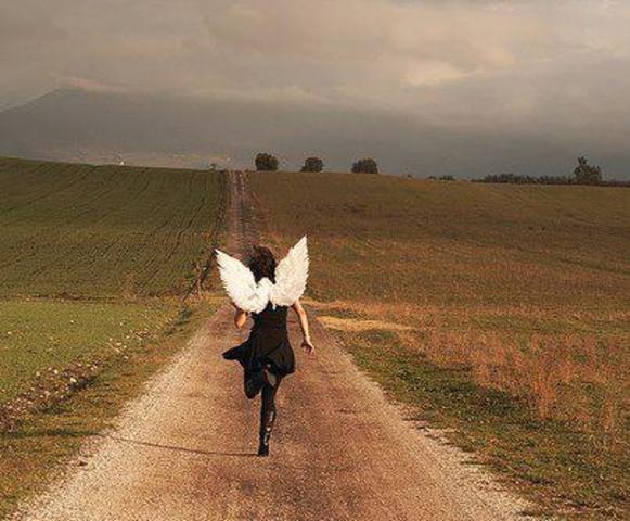 """""""Som englene flyver"""" af Naja Marie Aidt"""