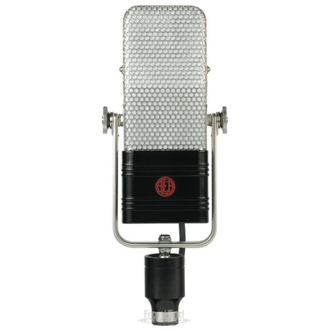The microphone
