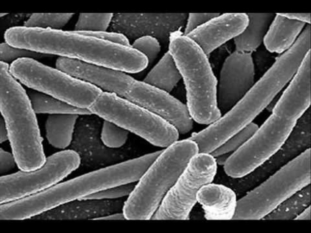 The Germ Theory